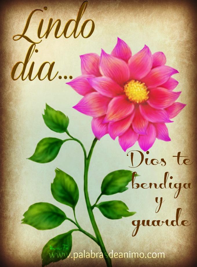 Que Dios te Bendiga y te Guarde Haga Resplandecer su Rostro Dios te Bendiga y Guarde