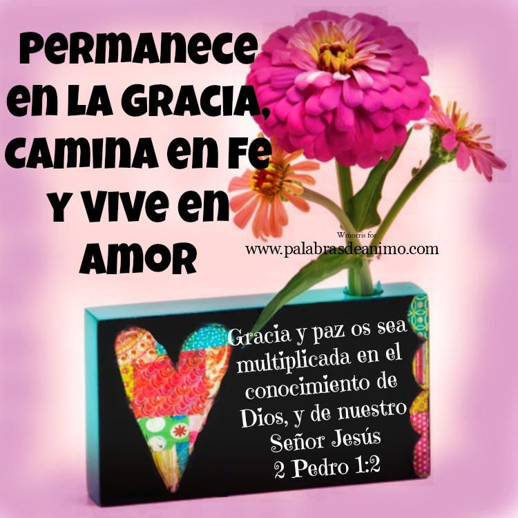 Permanece en gracia camina en fe y vive en amor
