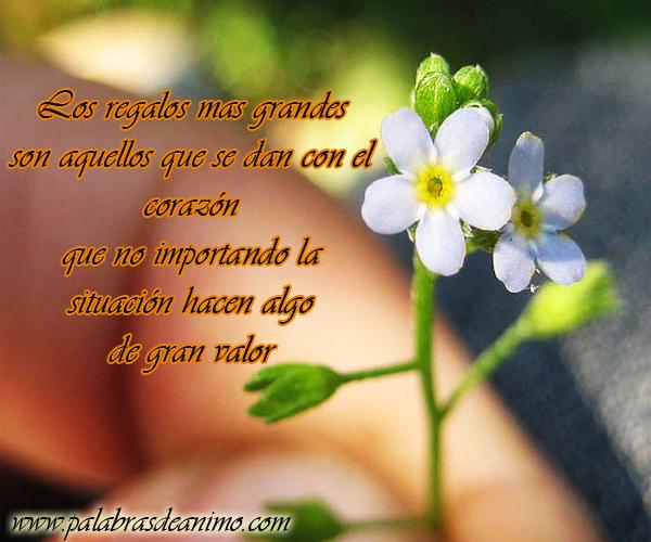 Los regalos mas importantes son aquellos que se dan con el corazón