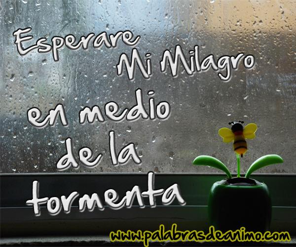 Esperare mi milagro en medio de la tormenta