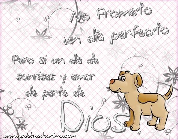 No prometo un dia perfecto pero si un dia de sonrisas y amor de parte de Dios