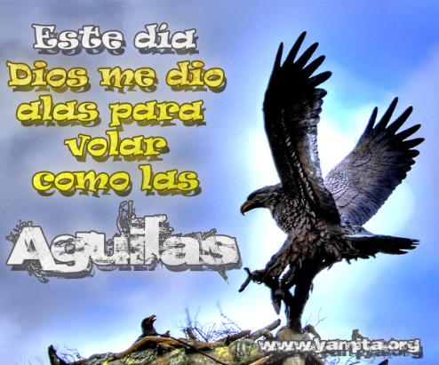 Este dia Dios me dio alas para volar como las águilas