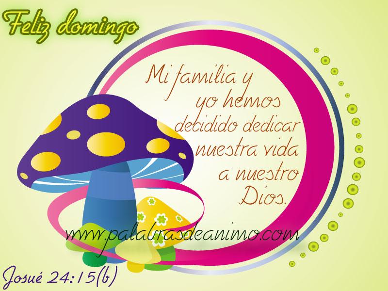 Pero-mi-familia-y-yo-hemos-decidido-dedicar-nuestra-vida-al-Señor