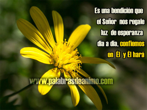 Es-una-bendicion-que-el-Señor-nos-regale-luz-de-esperanza