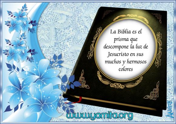 LA BIBLIA ES EL PRISMA