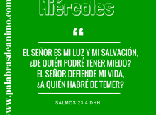 El Señor es mi luz y mi salvación (1)