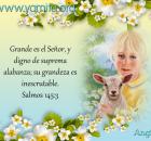 Grande es el Señor, y digno de suprema alabanza;