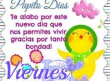 Papito Dios te alabo por este nuevo dia